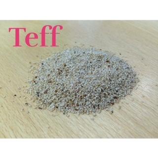 semillas teff